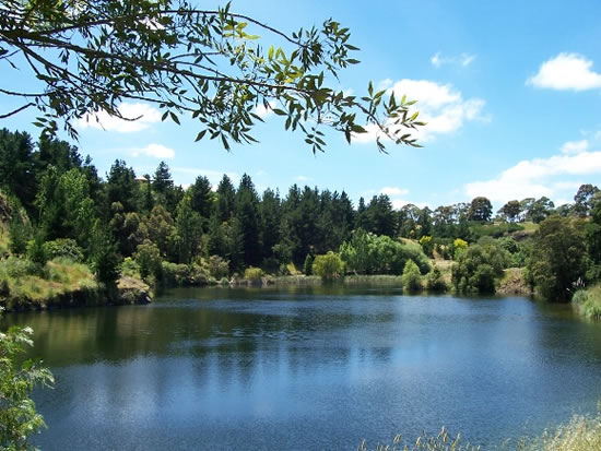 Wilsons Botanic Park